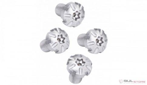 Torx Screws - Silver